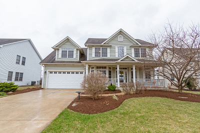 Elburn Single Family Home For Sale: 685 Independence Avenue