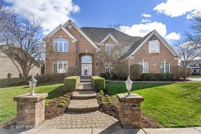 Naperville Single Family Home New: 1668 Imperial Circle