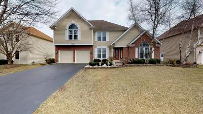 Naperville Single Family Home For Sale: 3516 Falkner Drive