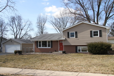 Downers Grove Single Family Home For Sale: 6104 Puffer Road