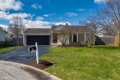 Aurora Single Family Home For Sale: 2640 Streamwood Court