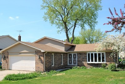 Schaumburg Single Family Home New: 582 Mistic Harbour Lane
