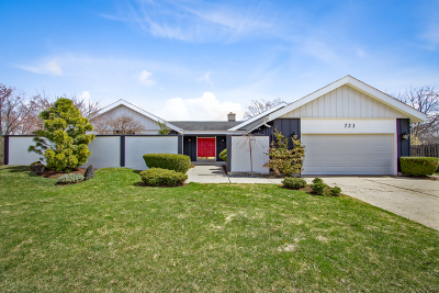 Palatine Single Family Home For Sale: 723 Middleton Court