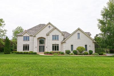 Single Family Home New: 6863 Ellis Drive