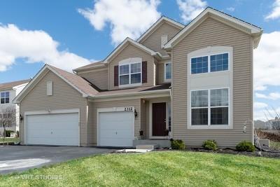Yorkville Single Family Home For Sale: 2312 Winterthur Green