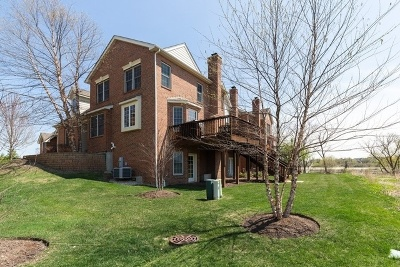 Hawthorn Woods Condo/Townhouse For Sale: 17 Harborside Way