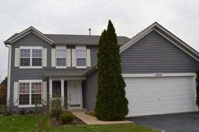 Minooka Single Family Home New: 1309 Marigold Lane