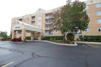 Lombard Condo/Townhouse New: 2260 South Grace Street #303