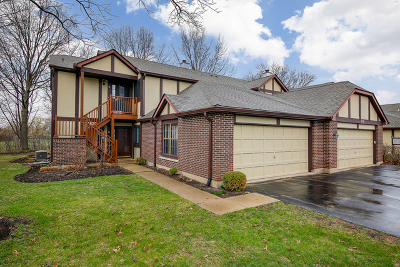 Glen Ellyn Rental For Rent: 356 Bloomfield Lane #6