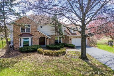 Lisle Single Family Home For Sale: 6245 Lakewood Drive