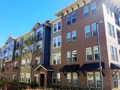Rental New: 690 East Algonquin Road #3209