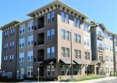 Rental New: 670 East Algonquin Road #4203