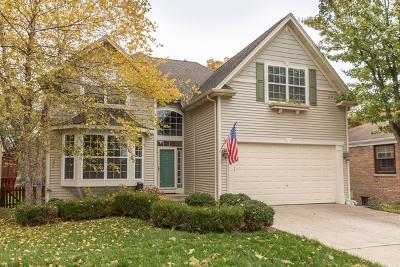 Wheaton Single Family Home New: 215 South President Street