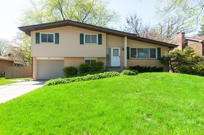 Mundelein Single Family Home For Sale: 856 Firth Road