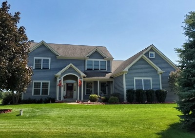 McHenry Single Family Home New: 517 Bluffs Edge Drive