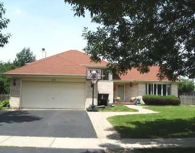 Bolingbrook Single Family Home For Sale: 469 Bradford Place Drive