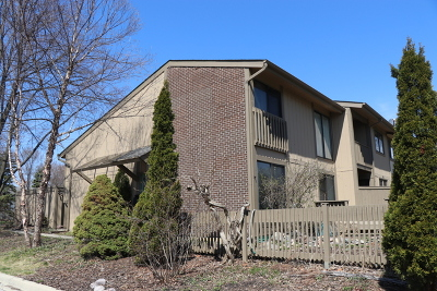 Roselle Condo/Townhouse New: 705 Acadia Court