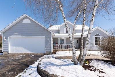 Elburn Single Family Home For Sale: 1n971 Mulhern Drive