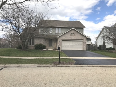 Bolingbrook Single Family Home For Sale: 768 Wheatland Lane