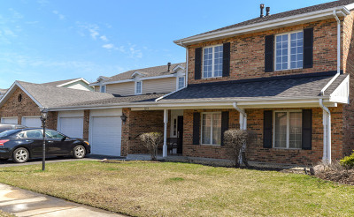 Willowbrook Condo/Townhouse New: 7215 Willow Way Lane #10-C