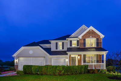 Plainfield Single Family Home New: 16062 South Selfridge Circle