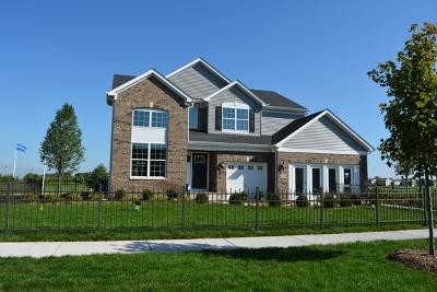 Plainfield Single Family Home New: 16060 South Selfridge Circle