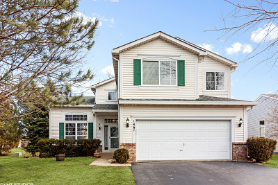 Bolingbrook Single Family Home Price Change: 146 Cider Street