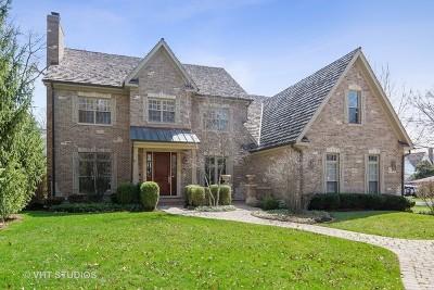 Hinsdale Single Family Home For Sale: 107 North Bruner Street