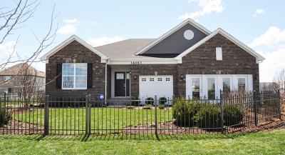 Plainfield Single Family Home New: 16052 South Selfridge Circle