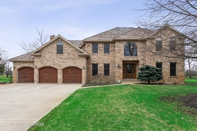 Naperville Single Family Home New: 10803 Royal Porthcawl Drive