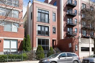 Condo/Townhouse New: 823 North Marshfield Avenue #2