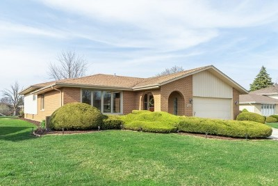 Orland Park Single Family Home For Sale: 8846 Terry Drive