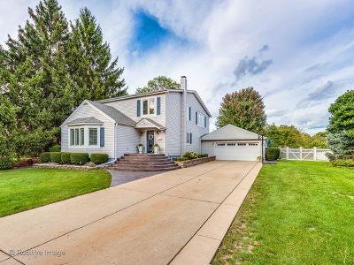 Arlington Single Family Home New: 1304 West Vine Street