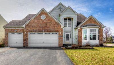 Bolingbrook Single Family Home For Sale: 1499 Breeze Way
