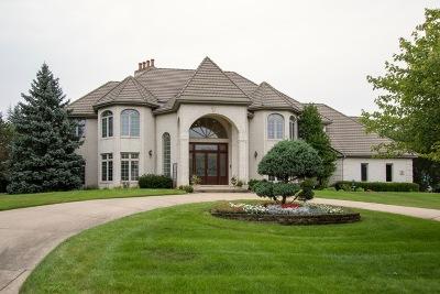 Burr Ridge Single Family Home New: 2 Chippewa Court