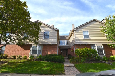 Schaumburg Condo/Townhouse New: 137 White Oak Court #9