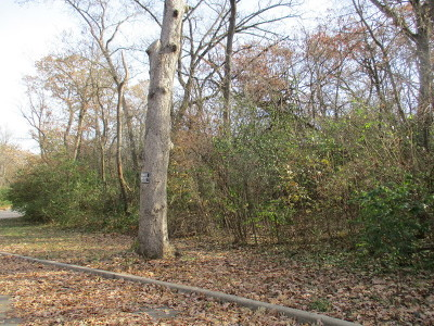 Mc Henry County Residential Lots & Land For Sale: 7501 Forest Oak Drive