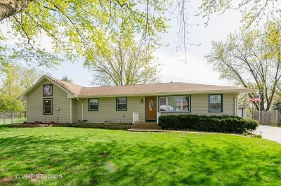 East Dundee Single Family Home For Sale: 32w607 Albert Drive