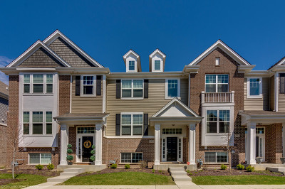 Naperville Condo/Townhouse New: 1435 North Charles Avenue