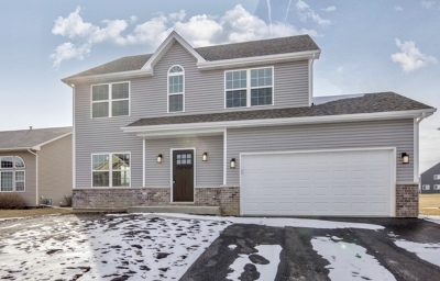 Joliet Single Family Home New: 1411 River Haven Trail
