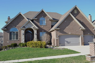 Orland Park Single Family Home For Sale: 10910 Sheridans Trail