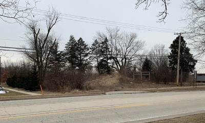 Lemont Residential Lots & Land For Sale: 15500 East 127th Street