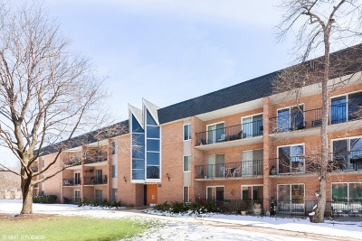 Naperville Condo/Townhouse Re-Activated: 1052 North Mill Street #306