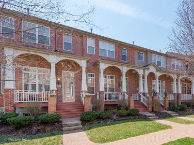 Lisle Condo/Townhouse For Sale: 6132 River Bend Drive