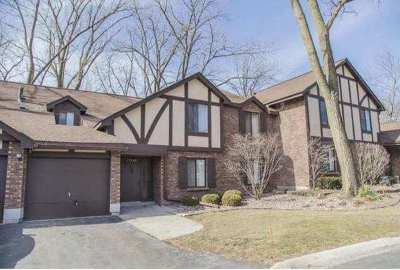 Palos Hills Condo/Townhouse New: 11240 Sycamore Lane #60D