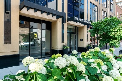 Condo/Townhouse New: 101 West Superior Street #1204