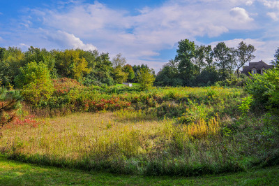 Mc Henry County Residential Lots & Land New: 4353 Carlisle Drive