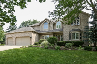 Naperville Single Family Home New: 1035 Sheringham Drive