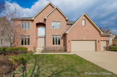 Palatine Single Family Home For Sale: 1265 South Patrick Lane