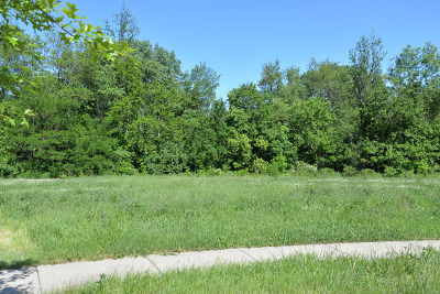 Elwood Residential Lots & Land For Sale: 00 Wooded Cove Drive